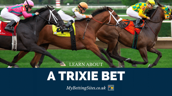 Trixie Bet Explained
