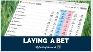 Laying A Bet Explained