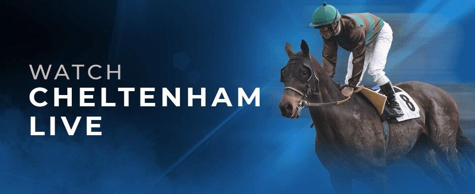 watch cheltenham live 2021